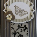 Stampin' Up Butterfly Card Using Elegant Edges Cricut Cartridge