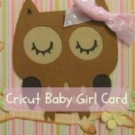 Cricut Owl Baby Card Using Create A Critter Cartridge