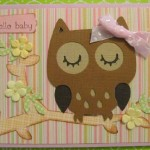 Cricut Owl Baby Card Using Create A Critter Cartridge